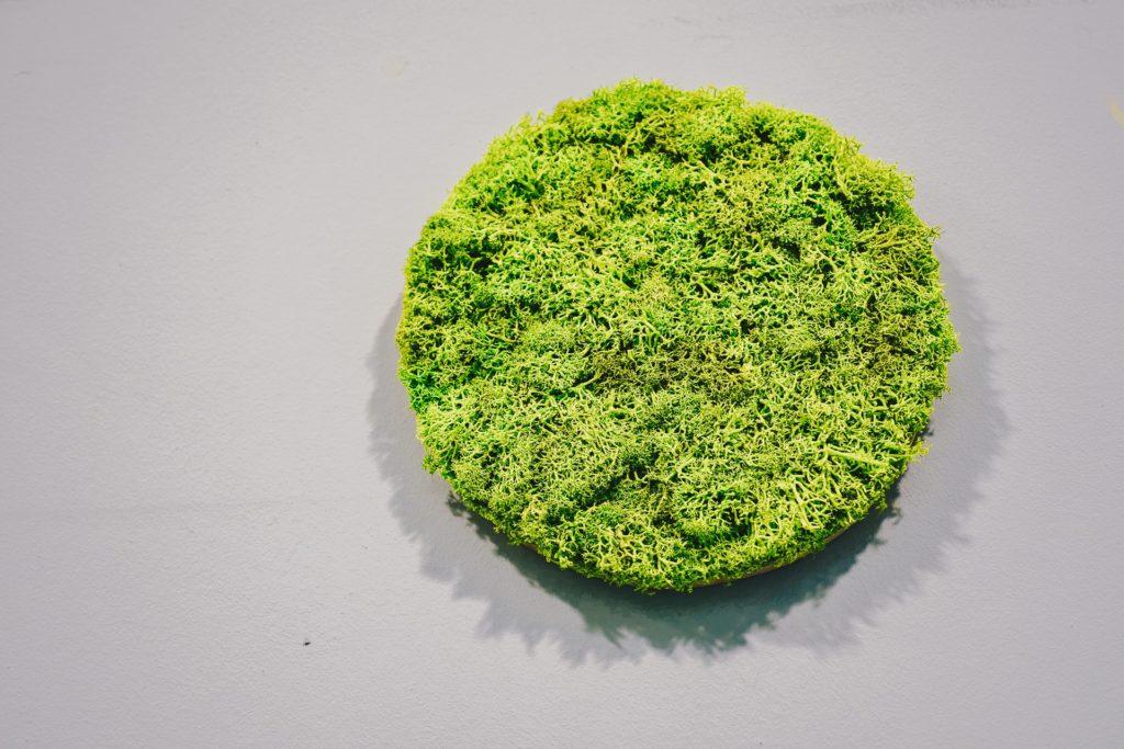 zielony obraz Juko Green Design